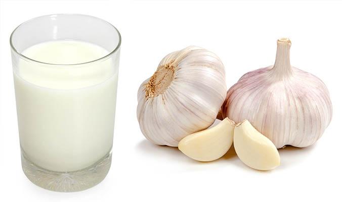 लहसुन वाला दूध रेसिपी – garlic milk benefits