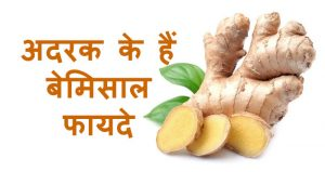 ginger benefits in hindi