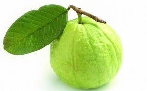 benefits of guava in hindi