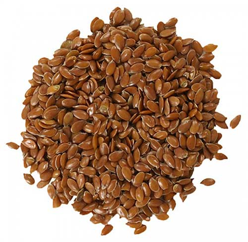 Flax Seeds = अलसी का बीज  IMAGES, GIF, ANIMATED GIF, WALLPAPER, STICKER FOR WHATSAPP & FACEBOOK