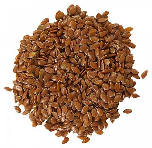 Flax Seeds = अलसी का बीज