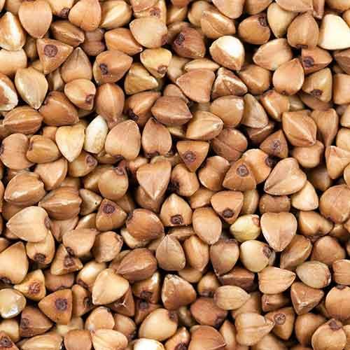 Buckwheat see