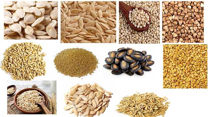 हिन्दी और अंग्रेजी में सभी बीज और अनाज के नाम Cereals Names